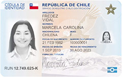 Immigration Relocation Advisors In Santiago De Chile Foreigner In Chile